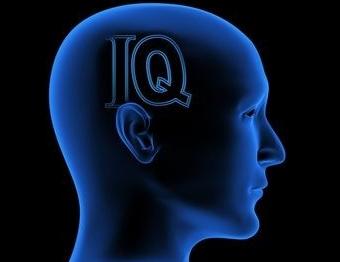 A Motivação Interfere nos Resultados do Teste de QI 5