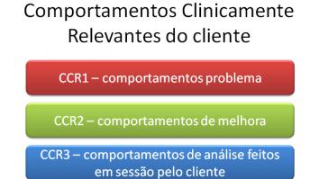 Psicoterapia Analítica Funcional (FAP): lidando com o cliente em sessão 17