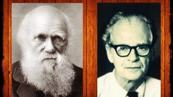 Darwin e Skinner I: Algumas anotações sobre variação 17