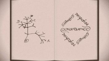 Darwin e Skinner II: Algumas anotações sobre Seleção 20