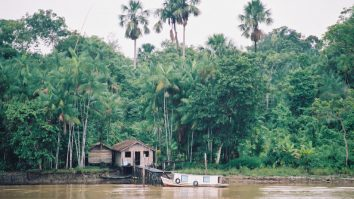 Servirão os princípios comportamentais para a Amazônia? 5
