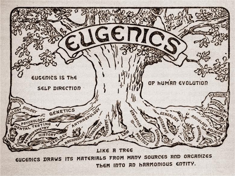 """The eugenic tree. Este emblema, mostrando as raízes distantes da eugenia, era parte de um certificado concedido a """"exposições de mérito"""" no II Congresso Internacional de Eugenia, realizada em 1921 no Museu Americano de História Natural, em Nova York. (Créditos da imagem: American Philosophical Society, Filadélfia, EUA.)"""