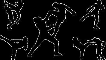 Dica de leitura: Variabilidade de comportamentos nas artes marciais 23