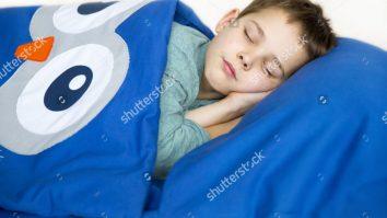 Autismo e Comorbidades: Problemas do Sono 17