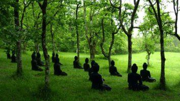 Retiro de mindfulness com a Dra. Marsha Linehan: Experiências, procedimentos e caminhos. 13