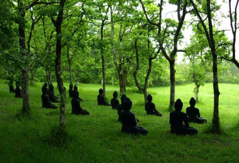 Retiro de mindfulness com a Dra. Marsha Linehan: Experiências, procedimentos e caminhos. 5