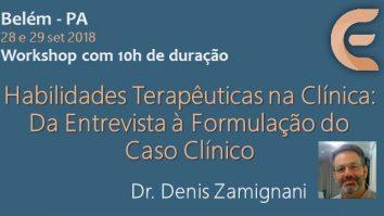 Curso: Habilidades Terapêuticas na Clínica: Da entrevista à formulação de caso clínico com Dr. Denis Zamignani 13
