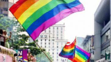 Cura gay – Uma breve reflexão comportamental 17