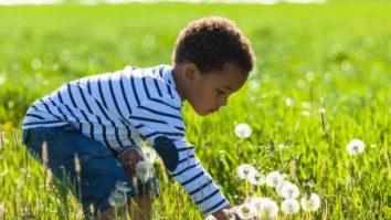Utilizando a Terapia de Aceitação e Compromisso (ACT) para a Promoção da Redução de Estresse em Pais de Crianças com Autismo 21