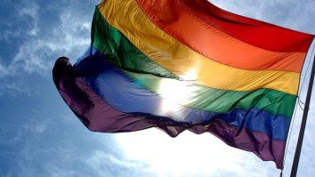 Os efeitos únicos da pandemia em pessoas LGBT: como a Terapia Comportamental Dialética (DBT) pode auxiliar a manejar o sofrimento 13